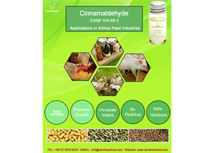 What Are the Uses of Cinnamaldehyde?
